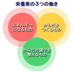 三大栄養素 湘南藤沢パーソナルトレーナー濱野優大